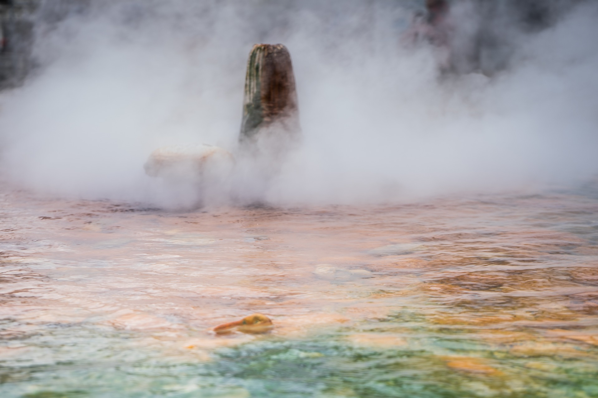 The boiling hot water from the natural hot springs in Karlovy Vary.