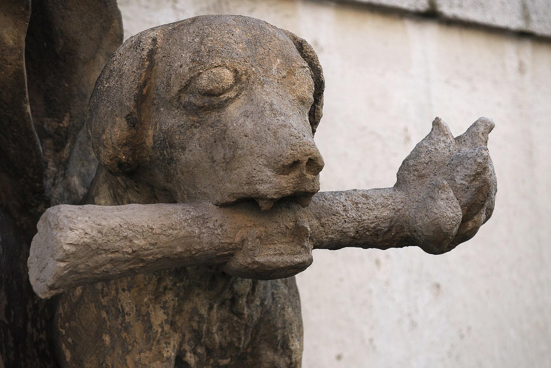 Dog and bone statue in České Budějovice